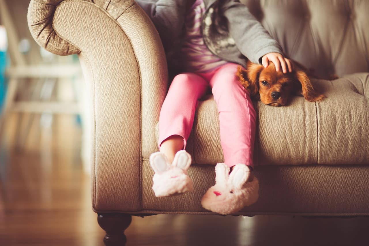 Girl With Dog on Couch