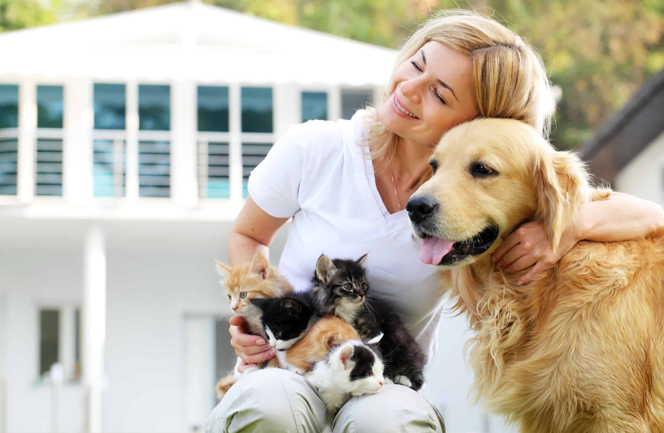 girl enjoying outdoor with group of a little cats and dog.