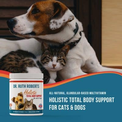 Holistic total body support