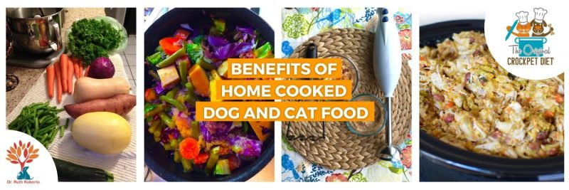 home made food for dogs and cats
